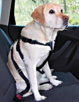 Auto-Sicherheitsgeschirr Trixie - Bild vergrößern