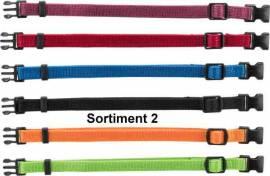 Welpen-Halsbänder 6-er auf Karte neue Farben - Bild vergrößern